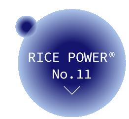 ライスパワー®No.11